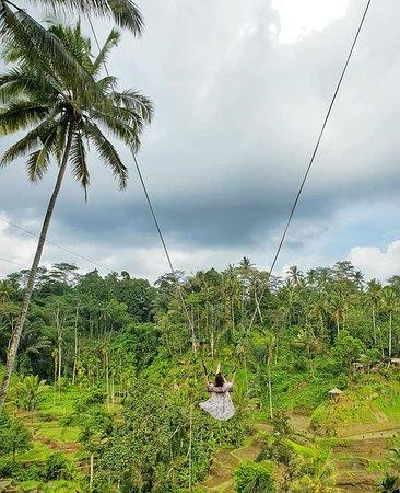 Bali-Tagestour: Die schönsten Orte: Ubud Swing