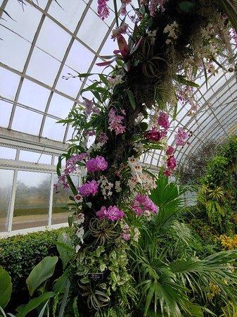 New york botanical garden bronx 2019 all you need to - New york botanical garden tickets ...