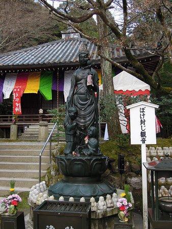 Imakumano Kannon-ji Temple Bokefuji Kannon