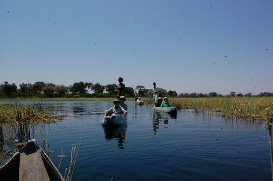 Okavango Delta: 1 DAY MOKORO TRIP  this trip takes you deep into the delta by 4x4 Vehicle at Boro, where you will meet local polers (nkashi) who will take you on a traditional canoe into the channels of the Okavango plains.