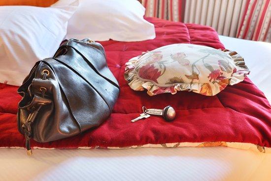 Hotel Suisse: chambre charme vue cathédrale