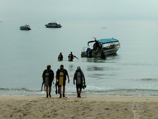 Tiong Man Scuba Dive