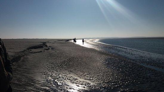 Visite en Baie de Somme