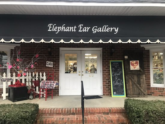 The Elephant Ear Gallery
