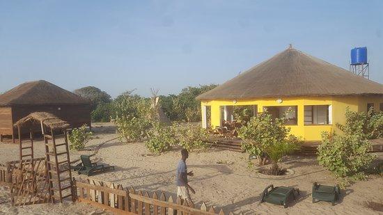 Gaya Art Cafe - The Gambia: Bees Mouth