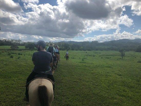 Outback Trails: Riding through the plains