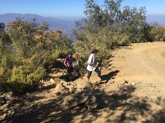 HIKKING PRIVATE TOUR IN NATIONAL PARK LA CAMPANA, VALPARAISO - CHILE FEBEREO 2019