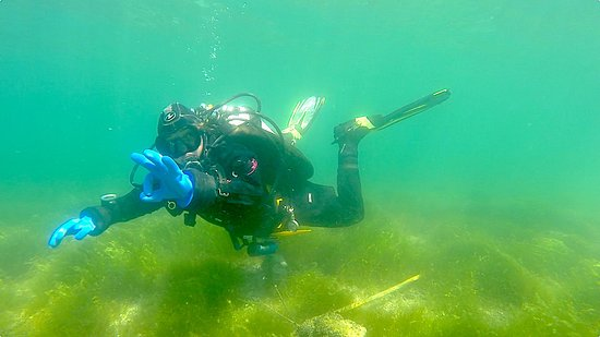 Hermance, Suiza: Guided Lake dives