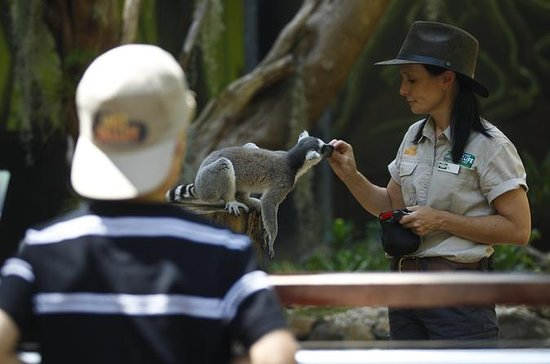 Currumbin Wildlife Sanctuary General...