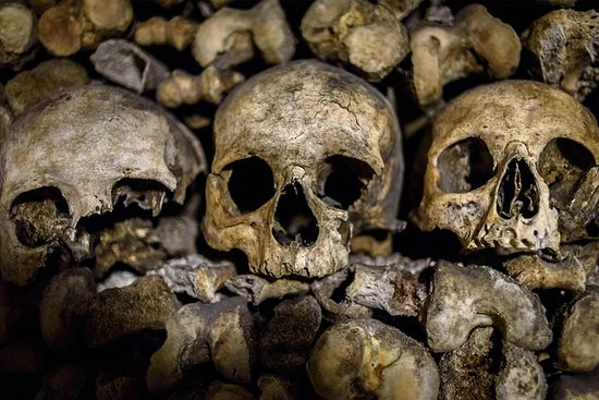 Skip-the-Line: Paris Catacombs Tour...