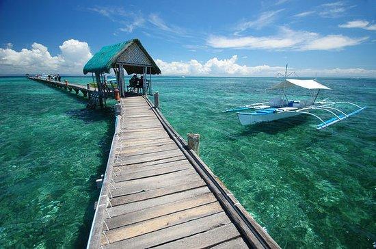 Mactan øyhoppingeventyr fra Cebu med...