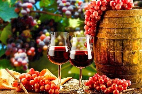 来自波尔图的杜罗河谷小团体之旅,品尝葡萄酒和游船