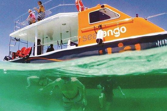 Fun Boat Snorkeling and Island Visit...