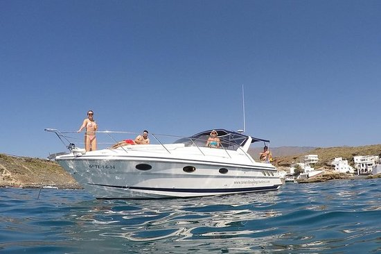 Luxury motor boat cruise with whale...