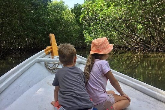 Excursion privée en bateau dans la...