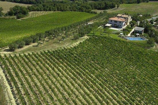 Pic nic y cata de vinos cerca de Todi.