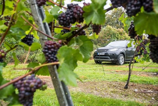 Private Hampshire Vineyards Tour