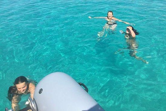 Halv dagers Blue Lagoon og Island Solta...
