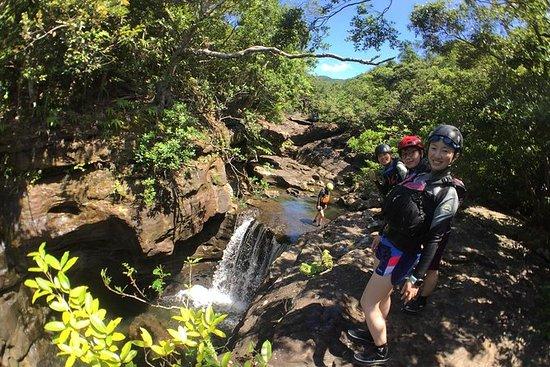 Iriomote Island Pinaisala Falls...