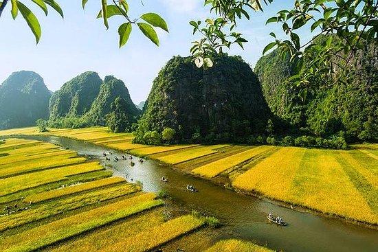 Ninh Binh 1 dagstur med Mua Cave og...