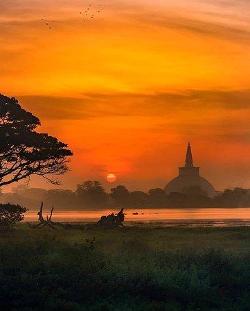 Lanka Safe Tours  Sri Lanka 🇱🇰
