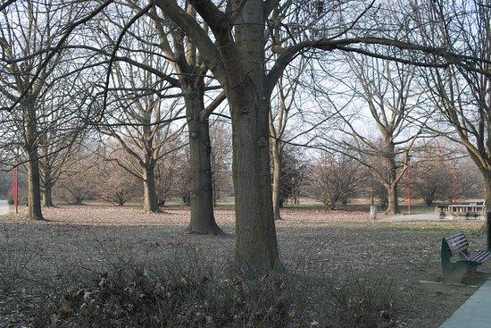 Parco Gianni  Rodari