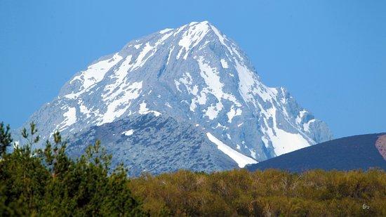 Pico Espiguete