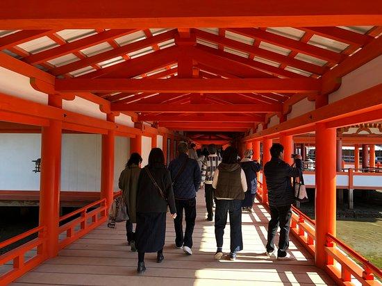 Itsukushima Shrine: 入口から続く回廊、入った瞬間、朱の鮮やかさが目に飛び込んできました。