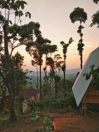 Landscape - Pravat Plantation Stay Image