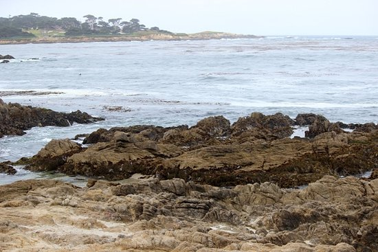 Plage de galets, Californie : Seal Rock Creek beach