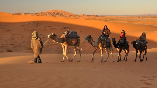 Rajasthan Holiday Planners