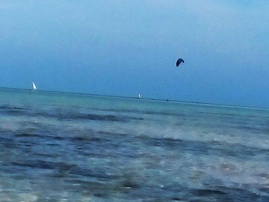 Серфинг, кайт