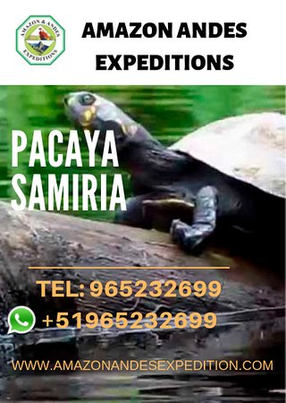 Amazon Andes Expedition (Iquitos) - All You Need to Know