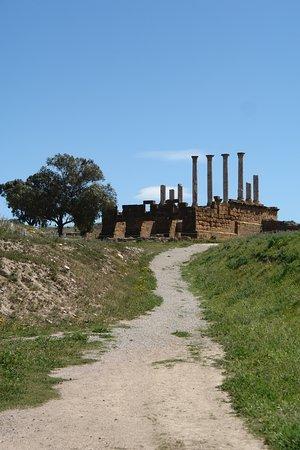 突尼西亞照片
