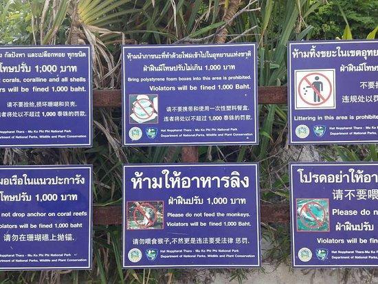 เกาะพีพีเล: Tourist Information Phi Phi Island