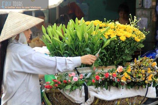 Hanoi - Ninh Binh - Halong...