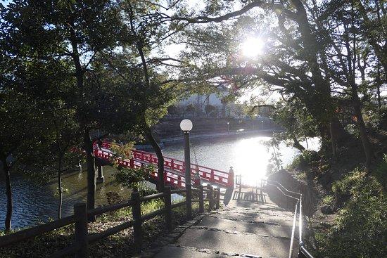 茶臼山から河底池に下る道。池に掛かかる和気橋が見えてきました。