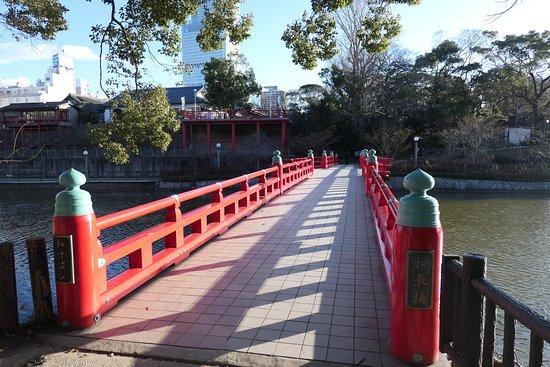 池に掛かっている真っ赤な和気橋です。素敵な橋ですね。