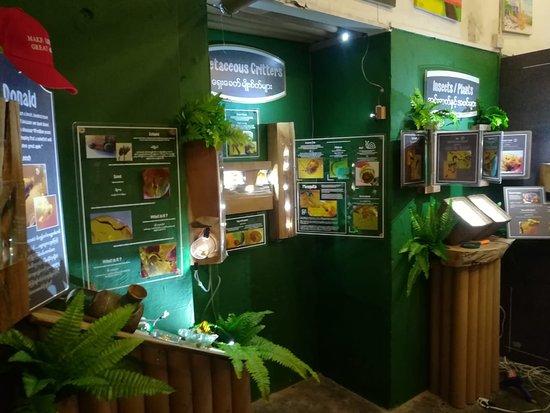 Myanmar Amber Museum