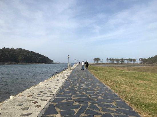 Navia صورة فوتوغرافية