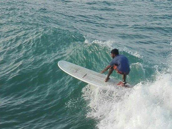 Three Fins Surf School