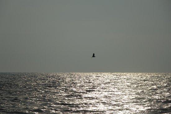 Pantai Redang: Approaching sunset
