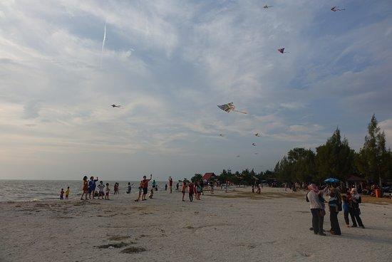 Pantai Redang: Kites