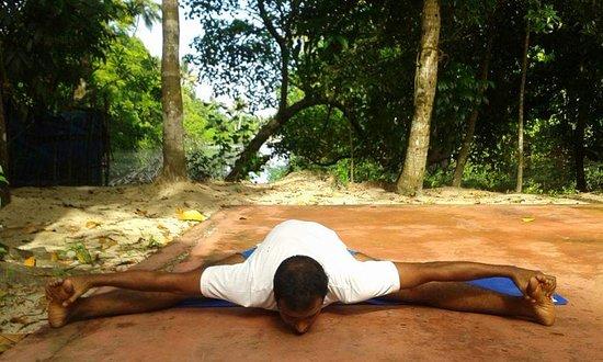 Marari Yoga & Kalarippayattu Flow Centre