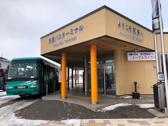 Shari Bus
