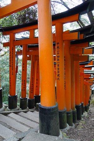 Fushimi Inari walk