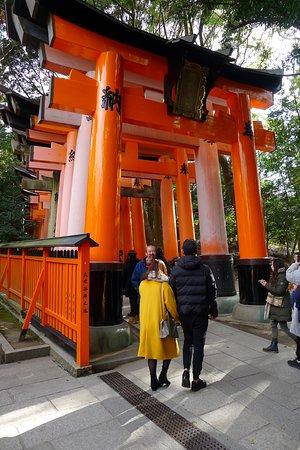 Fushimi Inari (starting point of the walk)
