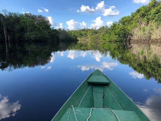 Autazes, AM: Passeio de barco no meio da Floresta Amazônica. Essa foi uma das atividades que fizemos no Juma Amazon Lodge. Foi com certeza uma das viagens mais incríveis de nossas vidas! A natureza é maravilhosa e os serviços e estrutura oferecidos pelo hotel, só melhoraram tudo.