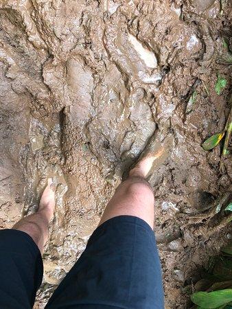 Sumidouro, RJ: Muita lama para chegar.