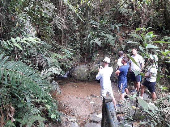 Best bilingual private tours with with Medellin City Services